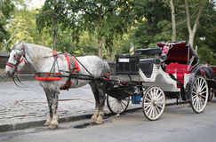 Paardvervoer dichtbij Central Park op 59ste Straat in Manhattan Royalty-vrije Stock Fotografie