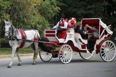 Paardvervoer dichtbij Central Park op 59ste Straat in Manhattan Stock Afbeeldingen