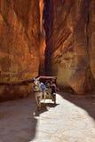 Paardvervoer in een kloof, Siq-canion in Petra Royalty-vrije Stock Foto
