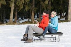 Paare auf dem Schlitten lizenzfreies stockfoto