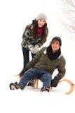 Paare auf Schlitten Stockbilder