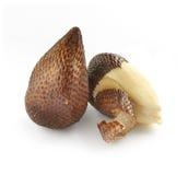 Paare der abgezogenen und ungeschälten Salak-Palmen-Frucht Lizenzfreie Stockfotos