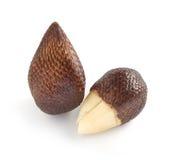 Paare der exotischen Salak-Palmen-Frucht Lizenzfreie Stockfotos