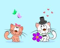 Paare der Katzen Stockfoto