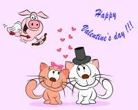 Paare der Katzen Lizenzfreies Stockfoto