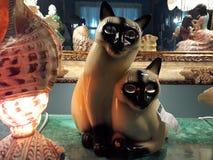 Paare der Katzen Stockbilder