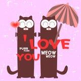 Paare der Katzen in der Liebe Lizenzfreies Stockfoto