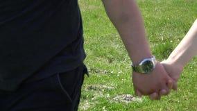 Paare in der Liebe, die auf ein grünes Feld und Händchenhalten geht stock footage