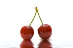 Paare der roten Kirsche Lizenzfreies Stockfoto