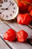 Paare der Stachelbeerblüte auf grauer Tabelle Lizenzfreies Stockfoto