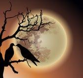 Paare der Taube auf totem Baum lizenzfreie abbildung