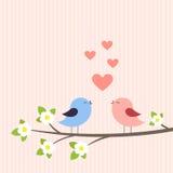 Paare der Vögel in der Liebe Lizenzfreies Stockfoto