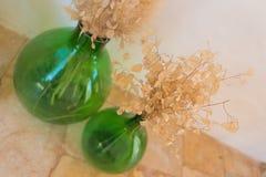 Paare des Blumenstraußes der getrockneten Blätter und der Blumen in Smaragdgrün gla Lizenzfreies Stockbild