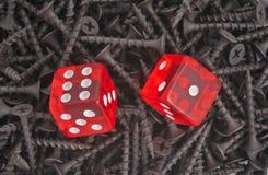 Paare des roten Würfellügens Lizenzfreie Stockfotografie