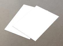Paare des weißen Fliegers lizenzfreie stockbilder