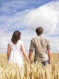 Paare, die auf dem Weizengebiet umarmen Stockfotos
