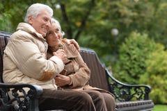 Paare, die auf Holzbank sitzen Lizenzfreies Stockfoto