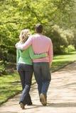 Paare, die auf Pfadarm im Arm gehen Stockbilder