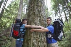 Paare, die Baum im Wald umarmen lizenzfreie stockfotos