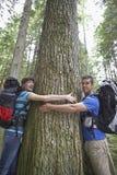 Paare, die Baum im Wald umarmen lizenzfreies stockfoto