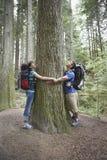 Paare, die Baum im Wald umarmen stockbild