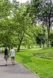 Paare, die in Central Park in New York City gehen lizenzfreie stockfotografie