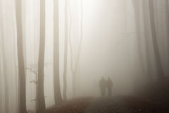 Paare, die in den nebelhaften Wald gehen Lizenzfreie Stockfotos