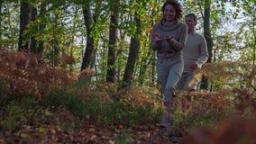 Paare, die in den Wald im Herbst gehen stock footage