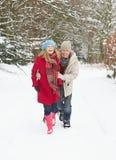 Paare, die durch Snowy-Waldland gehen Stockbild