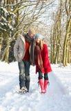 Paare, die durch Snowy-Waldland gehen Lizenzfreie Stockbilder