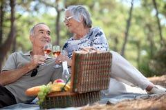 Paare, die ein Picknick genießen Lizenzfreie Stockfotos