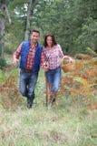 Paare, die einen Weg im Wald haben Lizenzfreies Stockbild