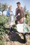 Paare, die am Garten arbeiten Stockfotos