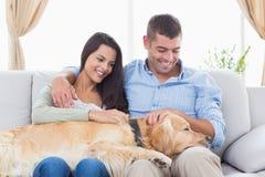 Paare, die golden retriever auf Sofa streichen Lizenzfreies Stockbild