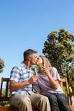 Paare, die im Park mit Wein sich entspannen Stockbilder