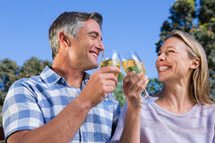 Paare, die im Park mit Wein sich entspannen Lizenzfreies Stockfoto