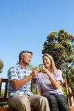 Paare, die im Park mit Wein sich entspannen Lizenzfreies Stockbild