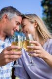 Paare, die im Park mit Wein sich entspannen Lizenzfreie Stockbilder