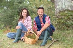 Paare, die im Wald sitzen Stockfotografie