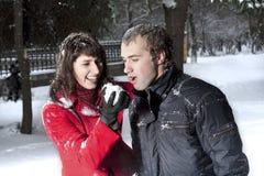 Paare, die im Winterpark spielen Stockfoto