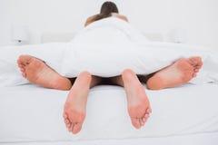 Paare, die Liebe im Bett machen Stockbilder
