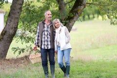 Paare, die nach Pilzen in der Landschaft suchen Stockfoto