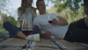 Paare, die Picknick haben stock footage