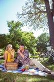 Paare, die Picknick im Park haben Stockbild