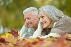 Paare, die Spaß im Park haben Stockfotografie