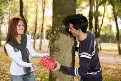 Paare, die Spaß am Park haben Stockbild