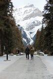Paare, die vor Berg gehen lizenzfreie stockfotos
