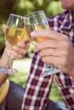 Paare, die Wein im Park essen Stockfotos