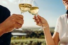Paare, die Wein rösten stockbilder