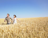 Paare, die in Weizenfeld laufen Stockfoto
